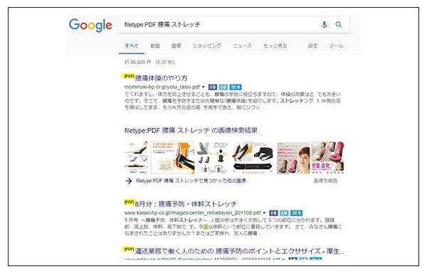 PDF検索結果のキャプチャ